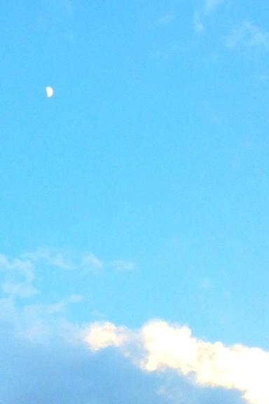 20120529-205311.jpg