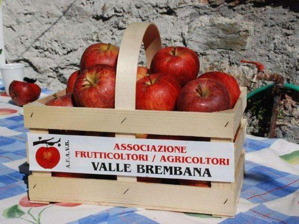 Tutti gli appuntamenti di sabato 19 ottobre - Tempo Libero - L'Eco di Bergamo - Notizie di Bergamo e provincia